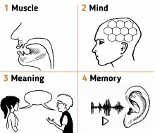Pronunciation: muscle, mind, meaning, memory - hancockmcdonald.com/ideas/pronunciation-muscle-mind-meaning-memory